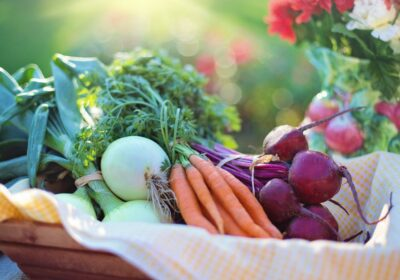agriculture-basket-beets-533360-1024x683-1